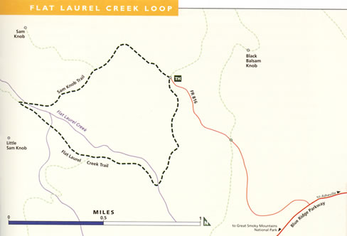 map of Flat Laurel Creek Loop trail